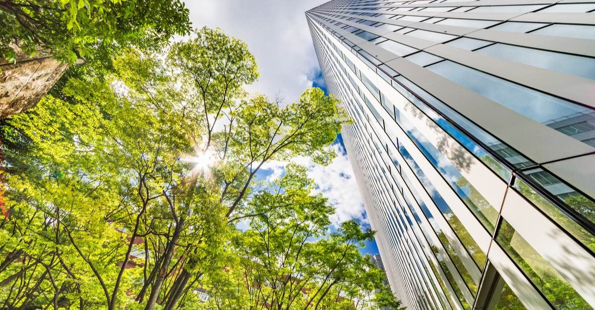Matériaux de construction écologiques